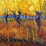 « Saules têtards au soleil couchant », 1888