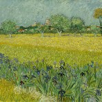 « Champs d'iris près d'Arles », 1888