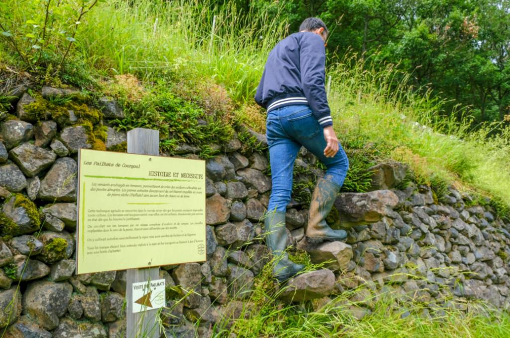 Depuis plusieurs années, l'association des Pailhats de Courgoul réaménage un paysage de terrasses de pierres sèches, appelées pailhats. ©Élise Rebiffé/CCAS