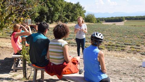 Vacanciers à la rencontre d'une productrice de lavande sur la ViaRhôna, itinéraire cyclable du lac Léman