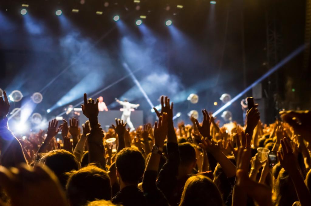Concert en salle, image d'illustration ©Éric Raz/CCAS